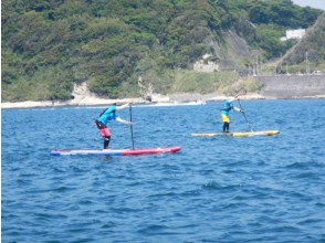 [Shizuoka / Shimoda] Private guide SUP experience 120 minutes with exclusive instructor