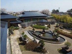 [Saitama / Omiya] A course to visit hidden spots in Omiya Town! Bonus-Welcome to the world of bonsai!