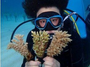 【沖縄県・恩納村】【コロナ対策店】サンゴ植付け体験ダイビング 環境教育にオススメ!