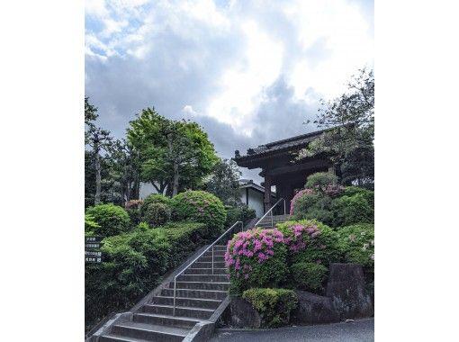 【2021東京ツアー】芝東照宮〜増上寺 江戸にタイムトリップ&新緑ウォークの紹介画像