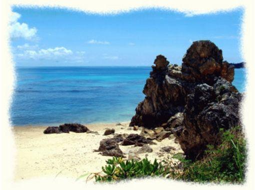 【沖縄・名護】ビーチダイビングで、沖縄の海を心おきなく満喫!(2ビーチ:半日プラン)