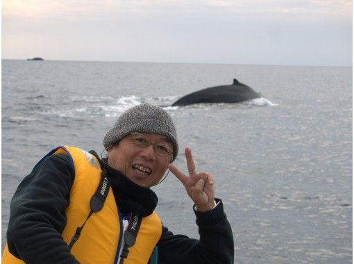 【オンライン講座】開催日限定!6/13(日) 高知県黒潮町と沖縄県座間味村から、30年以上のホエールウォッチングにより分かったクジラのお話しの紹介画像