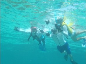 [Irabu - Miyakojima] coral field snorkel tour
