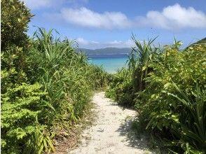 【沖縄・座間味島】オンラインLIVE自然ツアー「ランチタイムに♡白いビーチと青い海!少し野生生物」のんびりとゆったりとご参加下さい。