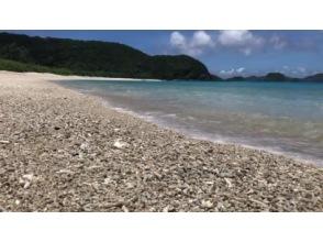 【沖縄・座間味島】オンラインLIVE自然ツアー「白いビーチと青い海!少し野生生物」のんびりとゆったりとご参加下さい。昼前から夕方までがお勧め