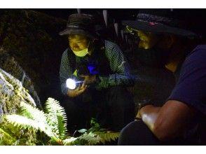 【栃木県・奥日光】夏休み・夜の湖畔で生き物・星空・暗闇、盛りだくさん!中禅寺湖畔ナイトハイキング