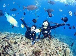 20周年特別価格!【北谷町】完全貸切・サンゴ礁のお花畑体験ダイビング♪水中撮影・餌やりサービス付き