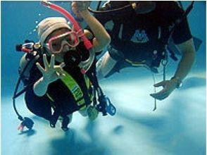 [Beginner must see! Okayama] pool diving experience course