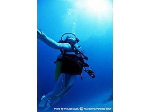 [Beginner must see! Okayama] beach diving experience course