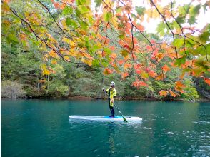 First landing in Hokkaido! CLEAR SUP Clear SUP National Park Clear SUP cruising at the only local tour shop in Lake Shikotsu ♪ Tour photo gift ♪