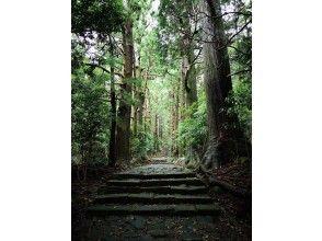 【和歌山 串本 熊野古道】世界遺産の熊野古道お手軽トレッキング 王道コースの大門坂やコアなファンが多い海沿いの大辺路等コースは様々