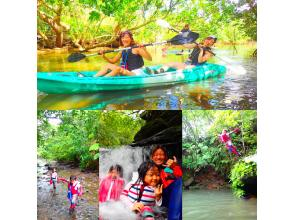 [World Heritage Iriomote Island Half Day] World Heritage Recommended Unexplored Waterfall Play! Mangrove canoe x jungle trekking x waterfall play! [Free tour photo data]