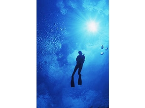 [Wet suit gift with Licensing! Okayama] Open Water Diver course