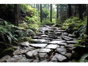 【三重県・伊勢/松阪】世界遺産熊野古道タクシー 馬越峠コース