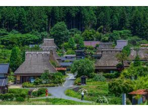 【京都】貸切観光タクシーでめぐる!嵐山・美山を訪ねる日帰りプラン