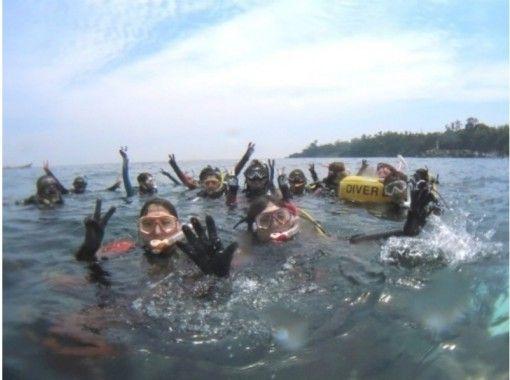 [Shizuoka Futo Yokobama] Snorkeling (all day tour)の紹介画像