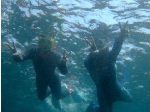 [Shizuoka Futo Yokobama] OWS: Snorkeling naturalist courseの紹介画像
