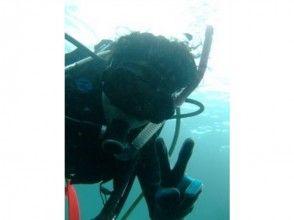 【静岡 伊東城ヶ崎 富戸 伊豆海洋公園 八幡野】海を気軽に楽しめる!体験ダイビングの画像
