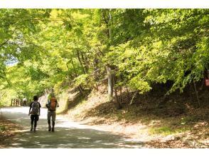 【ハイキング初級】絶景・西沢渓谷で癒しのマイナスイオンウォーク富士山を見渡すほったらかし温泉入浴日帰りツアーDB55