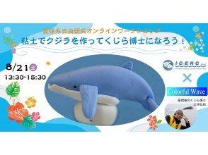 夏休み自由研究オンラインワークショップ「粘土でザトウクジラを作りながら、くじら博士になろう!」アイサーチ・ジャパン✕カラフルウェーブのコピー
