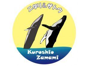 【夏休み自由研究】認定証とお土産付オンラインワークショップ「日本で逢えるクジラについて知ろう!ニタリクジラとザトウクジラの違い」黒潮✕座間味