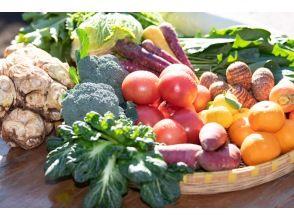 【秋田県・鹿角市】野菜農家の暮らし体験・旬の野菜の収穫体験と囲炉裏を囲んで和風BBQ・収穫野菜のお土産付き
