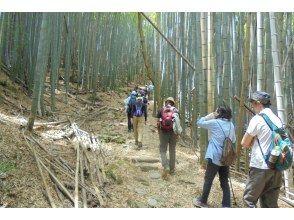 【和歌山・海南】語り部と歩く熊野古道散策(紀伊路)