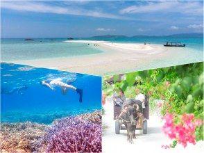 [Ishigaki Island & Taketomi Island / 1 day] ⑲ Full of charm of remote islands! Phantom island landing & snorkeling & leisurely sightseeing on Taketomi Island [Photo data free]