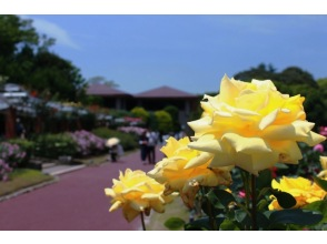えいごでしょくぶつえん!Let's go to 京都府立植物園!~英語で学ぶリアルくさばな図鑑!~