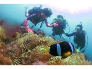 【静岡 伊東城ヶ崎 富戸 伊豆海洋公園 八幡野】海を気軽に楽しめる!こども体験ダイビングプログラム
