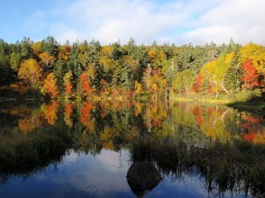 [Hokkaido / Sounkyo] Daisetsu Kogen Onsen Swamp Tour with a Professional Guide Autumn Leaves Trekking Tour