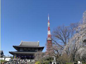 [Virtual Tour] Shiba Toshogu Shrine and Zojoji Temple