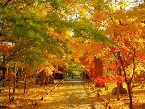 """就像東京市中心的京都""""Jōshinji Temple""""和秋葉景點旅遊巴士之旅-在源氏午餐的日本料理- [P017290]"""