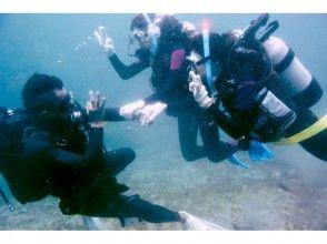 【徳島・日和佐】体験ダイビング(ビーチポイント)の画像