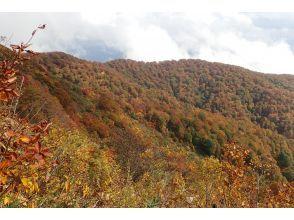 【山形・寒河江】葉山から望むご来光!サンライズトレッキングツアー