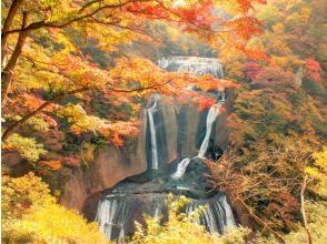 <22,000 yen subsidy! Ibaraki Prefecture North Monitor Tour> Fukuroda Falls Autumn Leaves Trekking & Washiko Yamagami Shrine Visit Bus Tour [3 Dense Measures] [P017265]