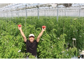 【石川・小松市】温度、湿度、CO2をiPadで操る、次世代農業の魔術師に会いに行く!