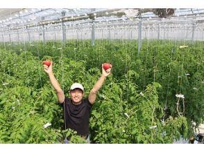 [Ishikawa / Komatsu City] Meet the next-generation farming magician who manipulates temperature, humidity & CO2 with an iPad!
