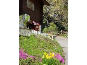 【和歌山・紀美野町】自然たっぷりの里山でハーブと遊ぶ