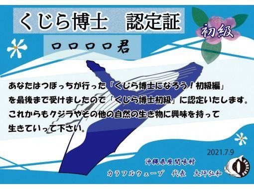 【小学生向け】オンライン『くじら博士になろう!』沖縄・座間味 クジラの事を知りたい人この指と~まれ✌の紹介画像