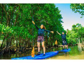 【沖縄本島・中北部】億首川マングローブSUPツアー|亜熱帯のマングローブの川へ冒険 SUPの旅♪