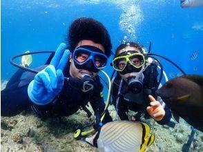 [오키나와 임의 체험 비치 다이빙] 당신에게 딱 맞는 플랜을 안내 ✨ 沖縄大 만끽 전세 다이빙 ✨GoPro 사진 동영상 & 먹이 무료!