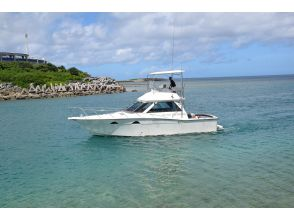 [All day] Let's enjoy the beautiful sea of a chartered cruiser uninhabited island on the main island of Okinawa!