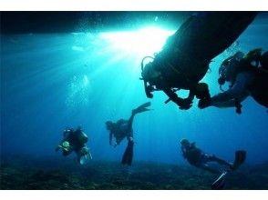 【沖縄・久米島】奇跡の海 ファンダイビング(1ダイブ)の画像
