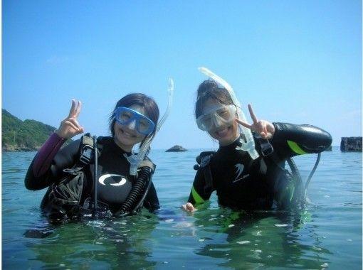 【鹿児島・屋久島】ウミガメと一緒に体験ダイビング(半日コース)<ライセンス不要>