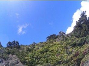 【鹿児島・屋久島】360度の大展望!トレッキング(黒味岳コース)の画像