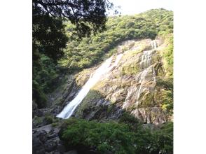 【鹿児島・屋久島】屋久島周遊・フリースタイルトレッキングの画像
