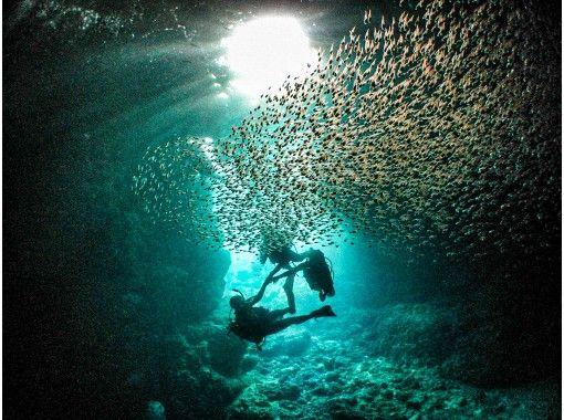 本地優惠券支持[藍洞]體驗潛水!還建議您提供不限數量的照片和星沙禮物,包括餵食經驗,並建議與海洋動物一起單獨擺放!の紹介画像