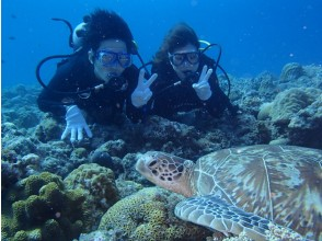 [Okinawa] (including Chibishi) Kerama waters satisfaction 120% in half a day flight! Diving of image