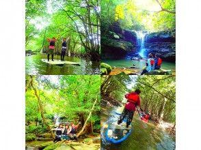 叢林探險的祕境的[沖繩西表島]紅樹林SUP(賽普)瀑布旅遊及峽谷(河)課程